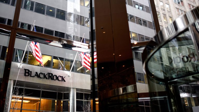 BlackRock Urges Sustainable Taxonomy – But At What Cost?